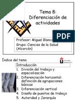 Tema 8 Diferenciación de actividades