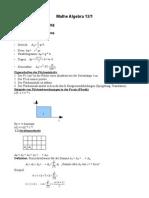 12/1 Mathe LK (Algebra)