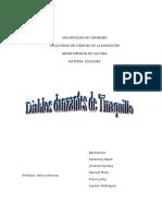 monografia fol1