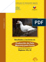 Libro Pato Muscovy