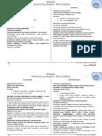 Resumão - Protozoários