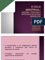 APRESENTAÇÃO ciclo menstrual