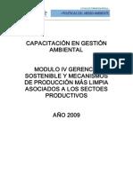 Modulo IV Gerencia Sostenible y Mecanismos de Produccion Mas Limpia 1