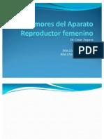 Tumores Del Aparato Re Product Or Femenino