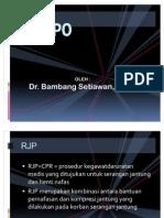 7 RJPO presentasi