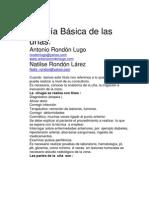 88-cirugia-basica-de-la-u%C3%B1a