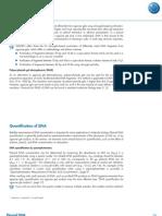 Plasmid DNA Quantification of DNA