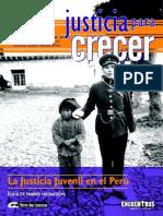 La Justicia Juvenil en El Peru