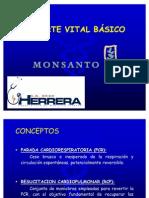 RCP BASICO MONSANTO