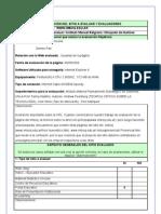 Planilla Evaluacion Web