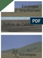 estrategias Gerenciales e Indices de Calidad (presentaciòn)