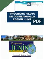 Programa Junin Global