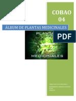 Album de Plantas Medic in Ales