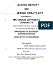 Project Report on marketing strategy for bba