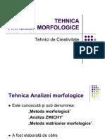 Analiza morfologica