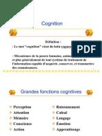 Langue Fr Et Cognition-PPT ALL