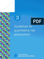 Guidelines for Quantitative Risk Assessment