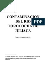 Contaminacion Del Rio Torococha
