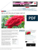 We'Re Still the City of Roses, Sort of - Windsor - CBC News