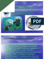 2ª ATIVIDADE DE ZOOLOGIA - SLIDES