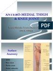 Antero-medial Thigh & Knee Joint