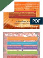 Políticas Públicas para a qualidade da educação brasileira_Marilia FONSECA
