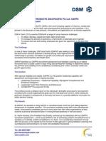 DSM AP GAPPS Recruitment Assessment