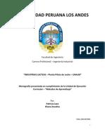 Informe Tecnico Planta Piloto de Leche UNALM 2011