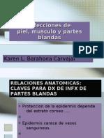 Infecciones de Piel, Musculo y Partes Blandas