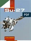 Su-27 Famous Russian Aircraft