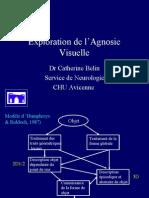 agnosievisuelle2006