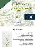 59aea2194630 Fűszerek 1. füzet. Flora, gyógynövény lap