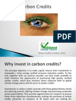 Eye on Carbon Credits