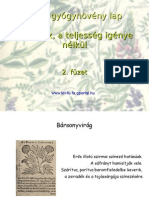 Fűszerek. 2. füzet Flora, gyógynövény lap