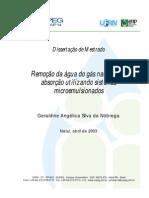 Geraldine Angelica Silva Da Nobrega PRH14 UFRN M