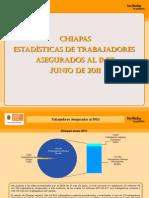Estadisticas IMSS Junio 2011