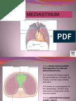 The Mediastianum[1]