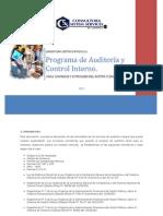Programa de Auditoria y Control Interno