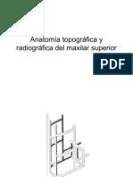Anatomia Topografica y Radiografica Del Maxilar Superior