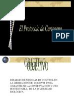 Protocolo Cartagena[1]