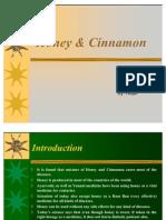 Benefits of Honey and Cinnamon 120663319776846 4