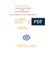 Foreign Exchange and Risk Management