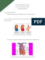 Aividade Física e Cardiopatia
