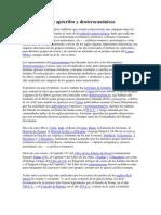 Diferencia entre apócrifos y deuterocanónicos