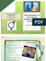 Psicogenesis de Un Caso de Homosexual Id Ad Femenina