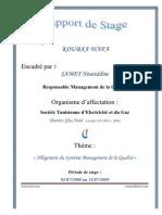 Rapport de Stage- STEG