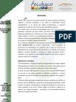 CONVOCATORIA  OFICIAL FEICHACO 2011