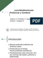 Paracoccidiodiomicosis pulmonar y cerebral