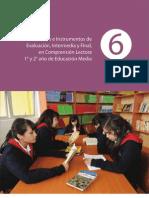 6ComprensiOn Lectora Eval Inter Media y Final