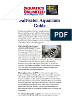 Saltwater Aquarium Guide